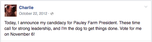 "Farm dog's Facebook post reads ""Today, I announce my candidacy for Pauley Farm President. These times call for strong leadership, and I'm the dog to get things done. Vote for me on November 6!"""