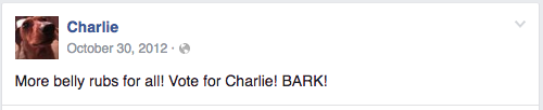 "Farm dog's Facebook post reads ""More belly rubs for all! Vote for Charlie! BARK!"""