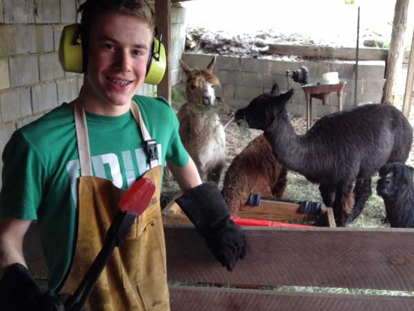 Blacksmith holding tongs at alpaca farm.