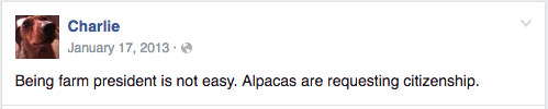 "Farm dog's Facebook post reads ""Being farm president is not easy. Alpacas are requesting citizenship."""